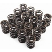 Supertech 2JZ/1JZ Single Valve Spring Kit